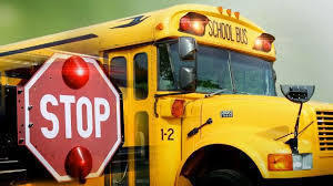 Stop Means Stop School Bus Safety
