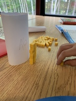 5th Graders Practice Mathematical Thinking