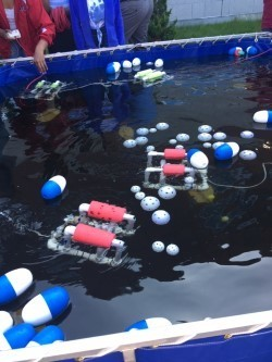 ROVs competing to see which one could gather up the most items in the water.